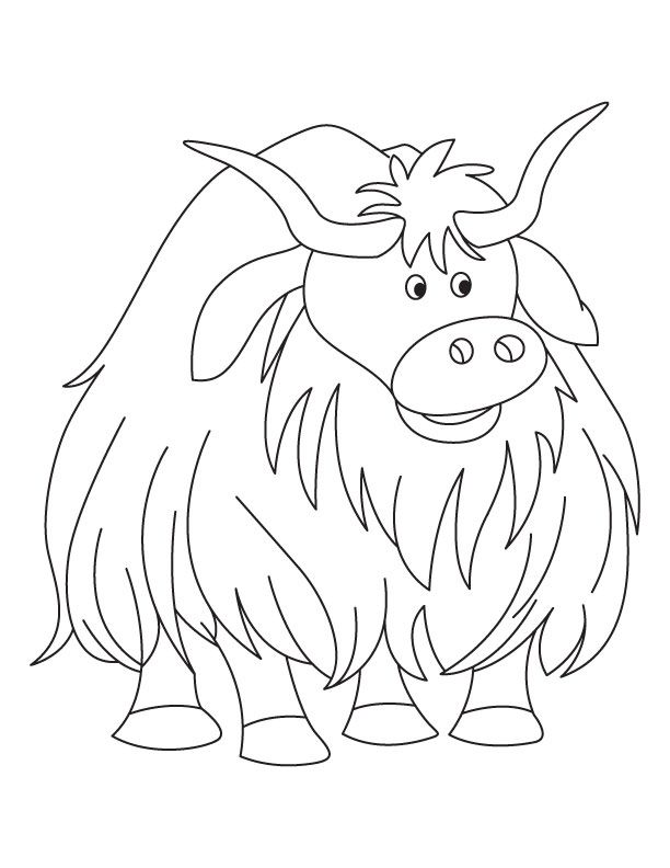 http://bestcoloringpages.com/userImages/cp/yak-coloring