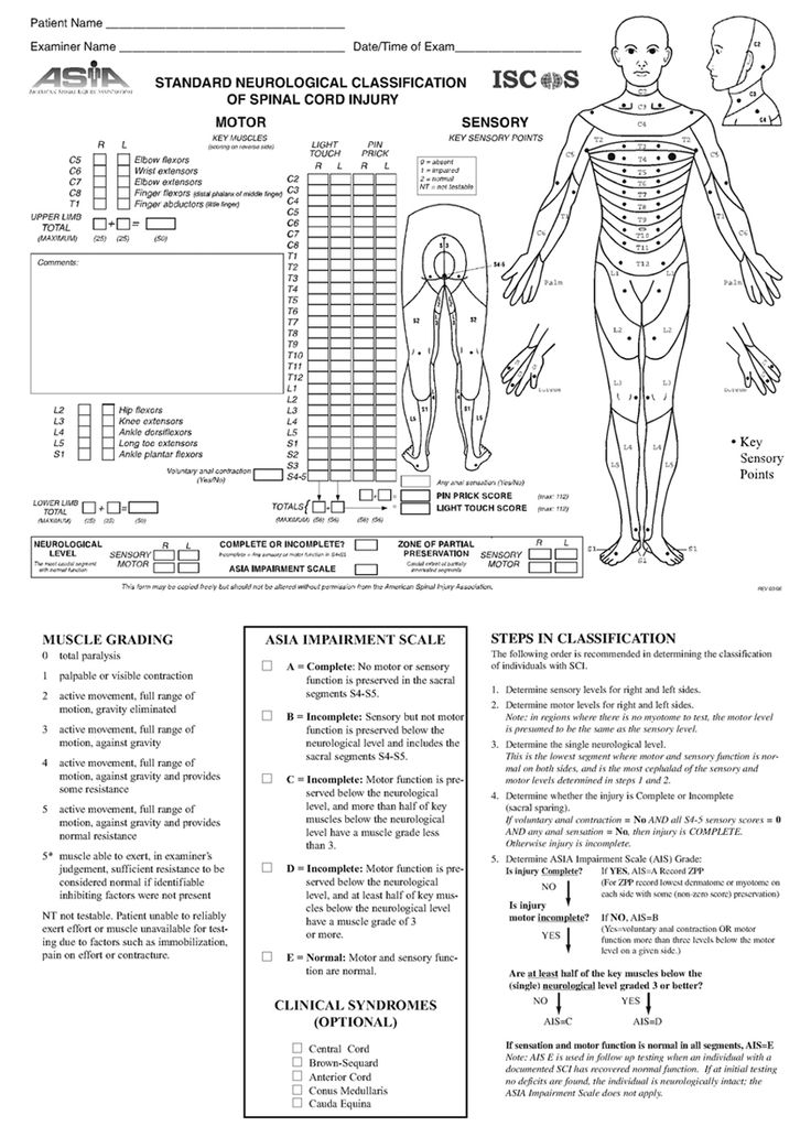 163 best OT- Assessments/ Important Forms images on Pinterest