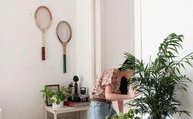 17 Best Images About Bedroom Plants On Pinterest Indoor