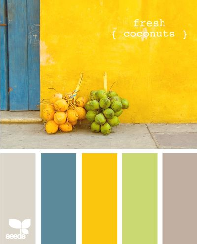 Color palette for kitchen–walls  light dusky turquoise (?), table yellow, barri