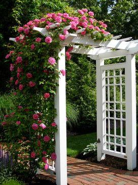 25 Best Arbor Ideas On Pinterest Arbors Garden Arbor And Small
