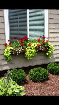 25+ best ideas about Window box flowers on Pinterest ...