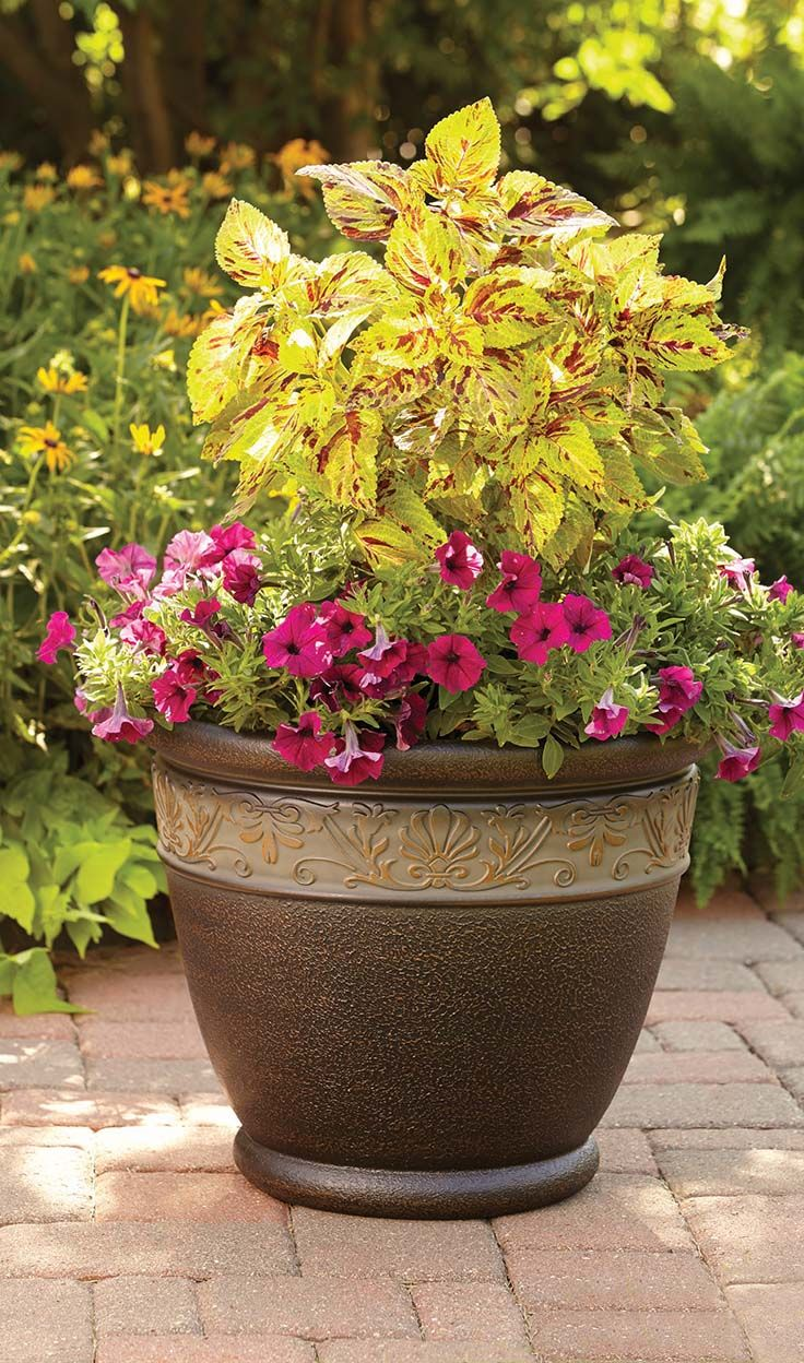 Garden Ideas Better Homes And Gardens better homes and gardens containers. amazing better homes and