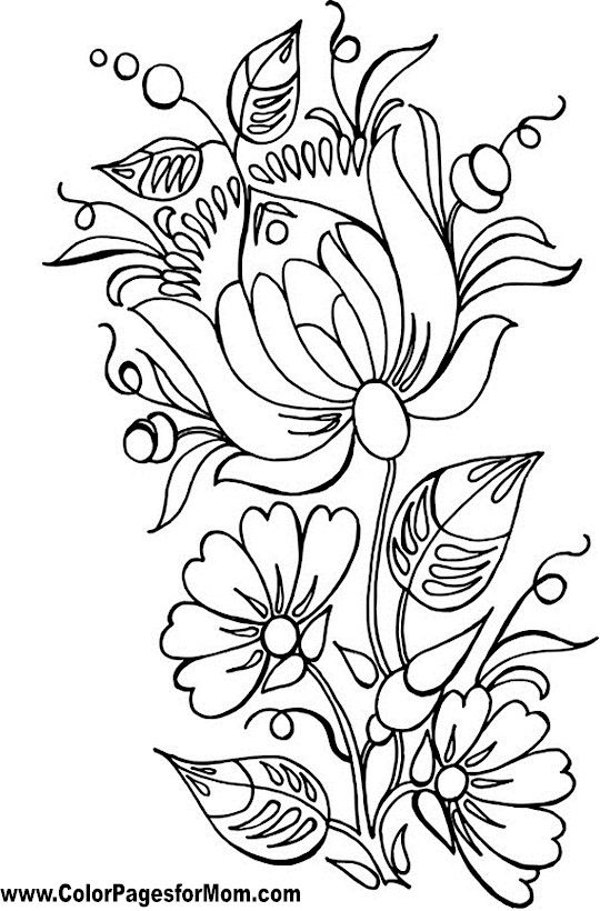 Top 25 Ideas About Flower Line Drawings
