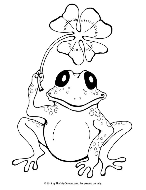 53 Best images about FROGS COLORING PAGES on Pinterest