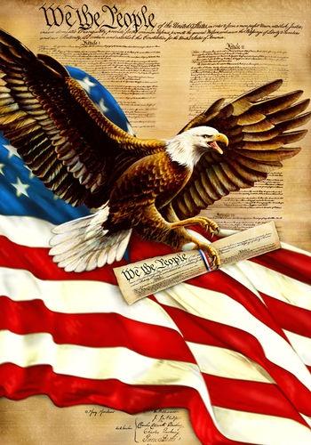 0938FL Large Flag We The People Eagle Patriotic