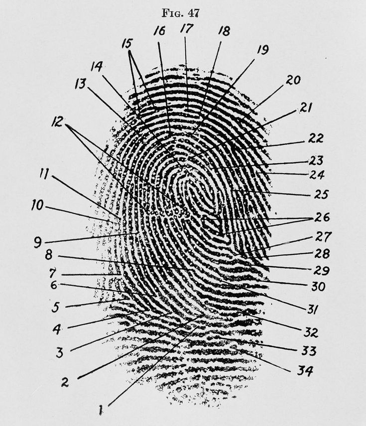 641 best images about Forensic Art And Science on