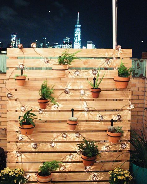 17 Best ideas about Backyard String Lights on Pinterest