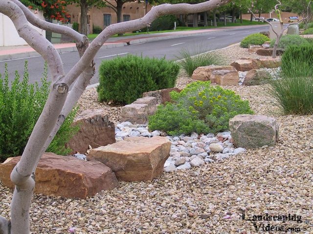 Xeriscaping Low Water Use Planting Display in New Mexico with large decorative landscaping rocks, different color and texture of ground cover gravel, and native and adaptive Southwest and Desert