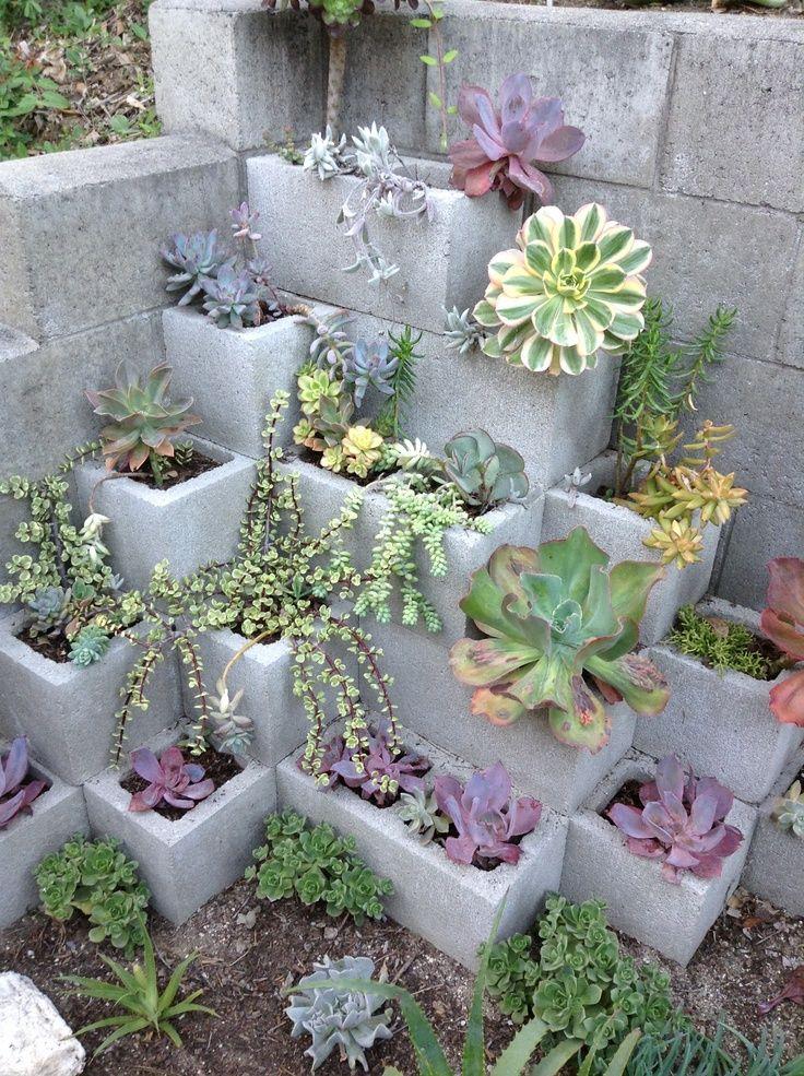 Best 20 Cinder Block Garden Ideas On Pinterest Cinder Blocks