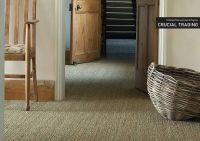 Sisal Wall To Wall Carpet - Carpet Vidalondon