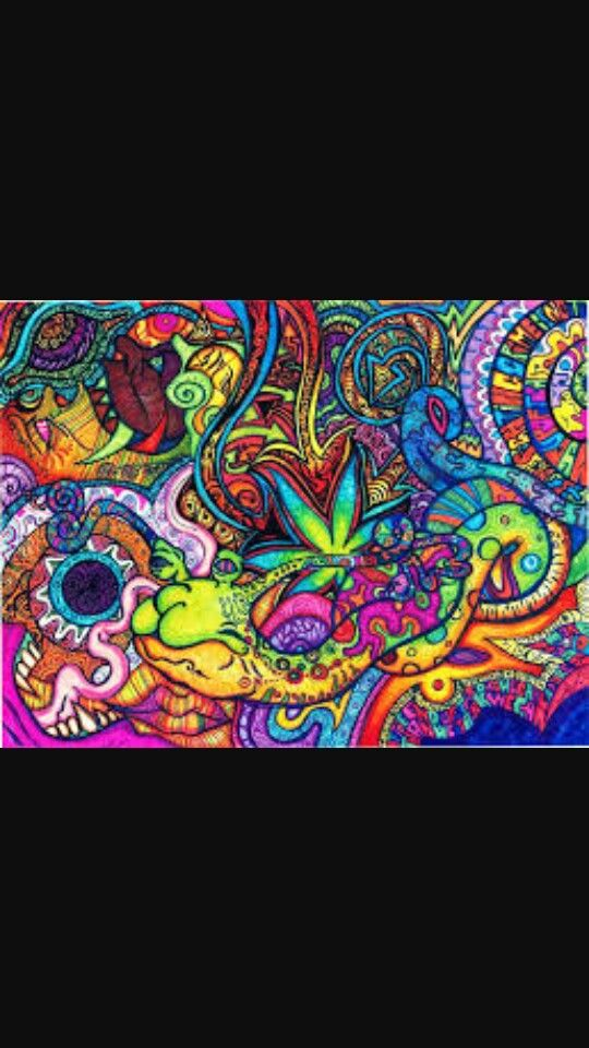 Wallpaper Cute Hipster Cat 17 Best Images About Trippy Backgrounds On Pinterest