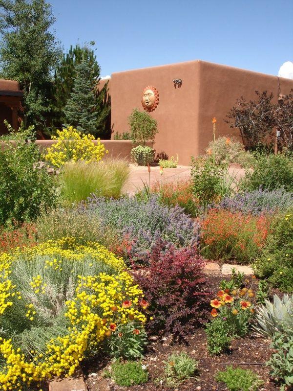 9 desert backyard