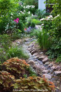 25+ best ideas about Garden stream on Pinterest | Dog ...