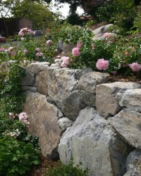 17 Best images about Retaining Wall Beautiful on Pinterest