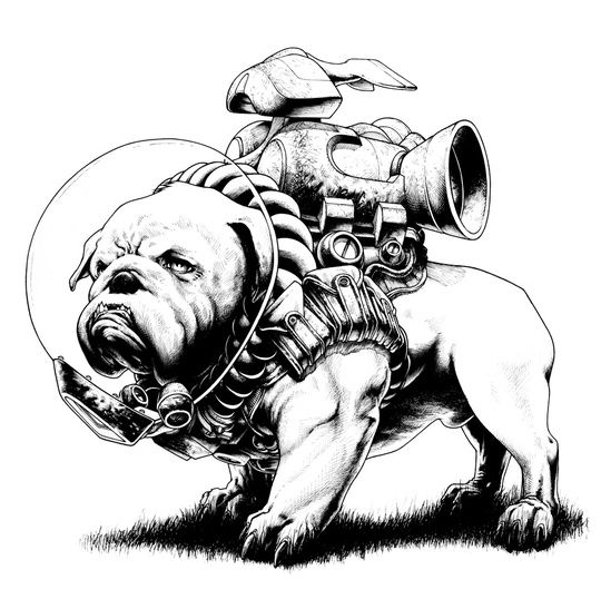 256 best images about Bulldog comics and cartoons and
