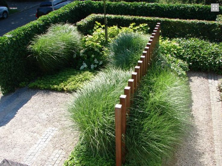 260 Best Images About Contemporary Gardens On Pinterest Gardens