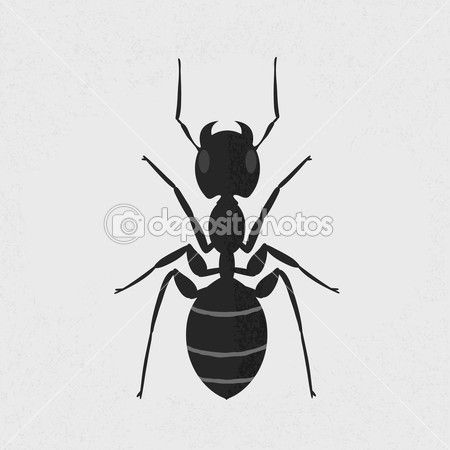 17 Best images about ANT Patterns  Illustrations on