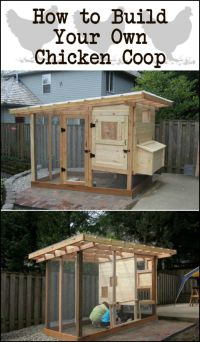 25+ best ideas about Chicken coop pallets on Pinterest ...