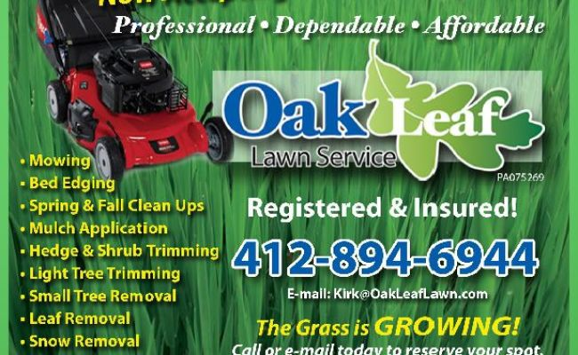 How To Advertise Grow My Lawn Service Business Business Cards Dubai Khalifa