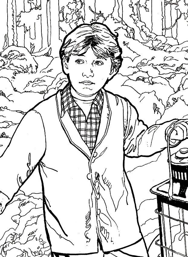 210 best images about Harry Potter coloring pages on Pinterest