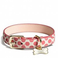 1000+ ideas about Cute Dog Collars on Pinterest | Dog ...