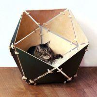 1000+ ideas about Geometric Cat on Pinterest | Geometric ...
