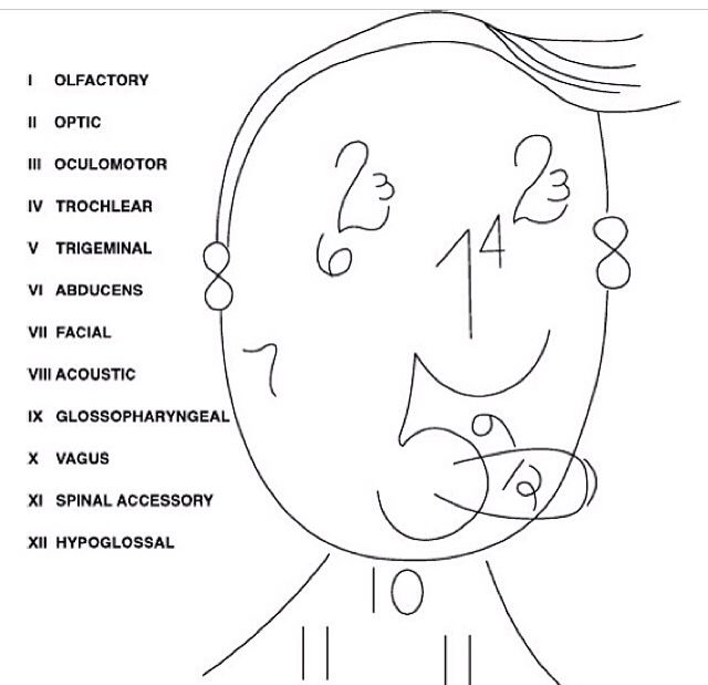 1000+ images about That Medical Life! on Pinterest