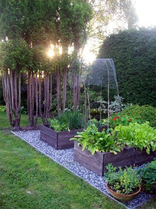 25 Best Ideas About Raised Garden Beds On Pinterest Raised