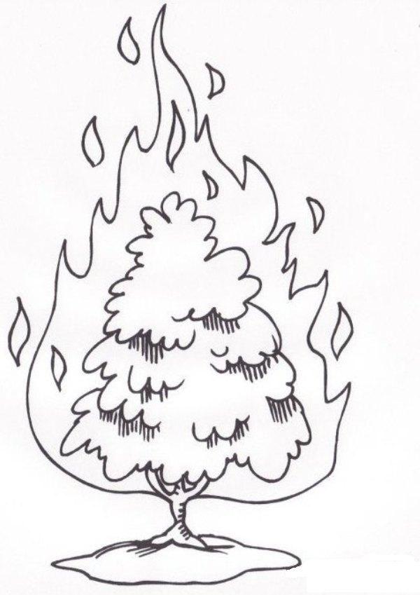 mose brennender dornbusch