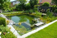 17 Best ideas about Natural Backyard Pools on Pinterest ...