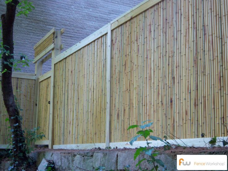 17 Best Ideas About Cheap Privacy Fence On Pinterest