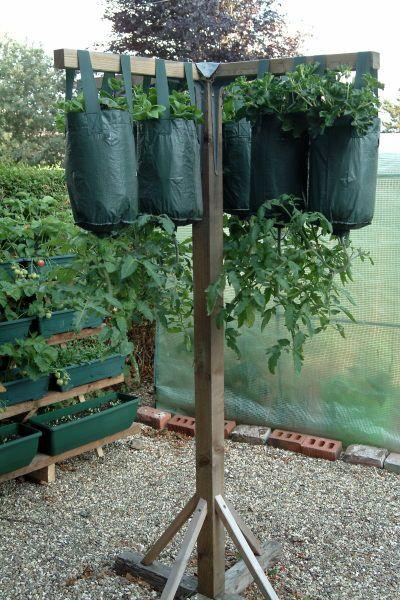 25 Best Ideas About Upside Down Tomato Planter On Pinterest