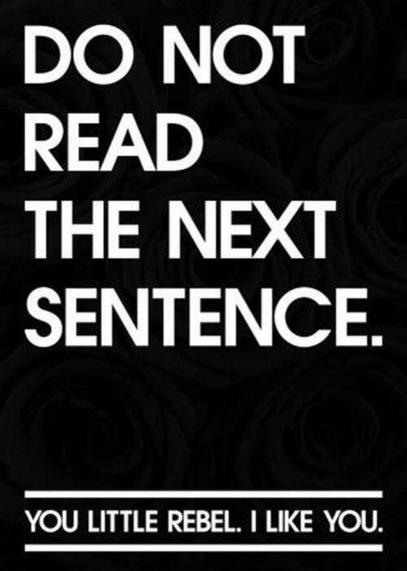 – Do not read the next sentence.  – You little rebel. I like you. A funny quote!