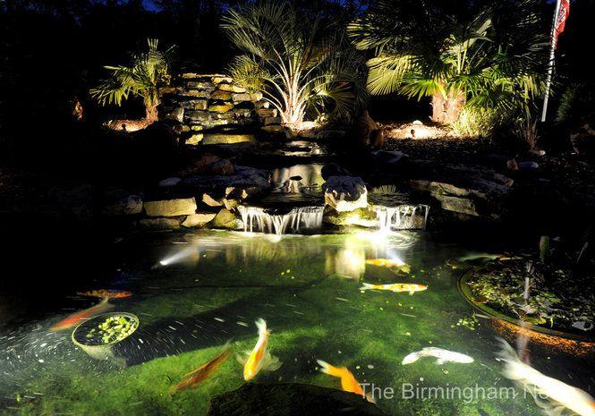 100 Ideas Koi Pond Lighting Ideas On Cropost Com