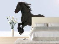 1000+ ideas about Horse Bedroom Decor on Pinterest | Horse ...