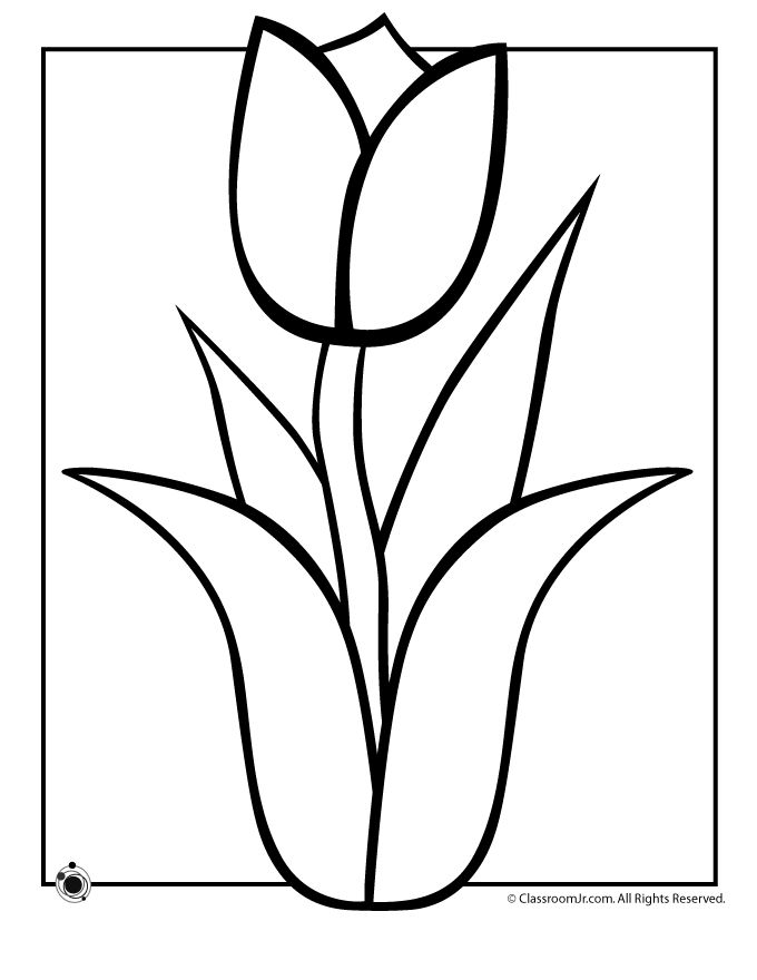 25+ best ideas about Flower Coloring Pages on Pinterest