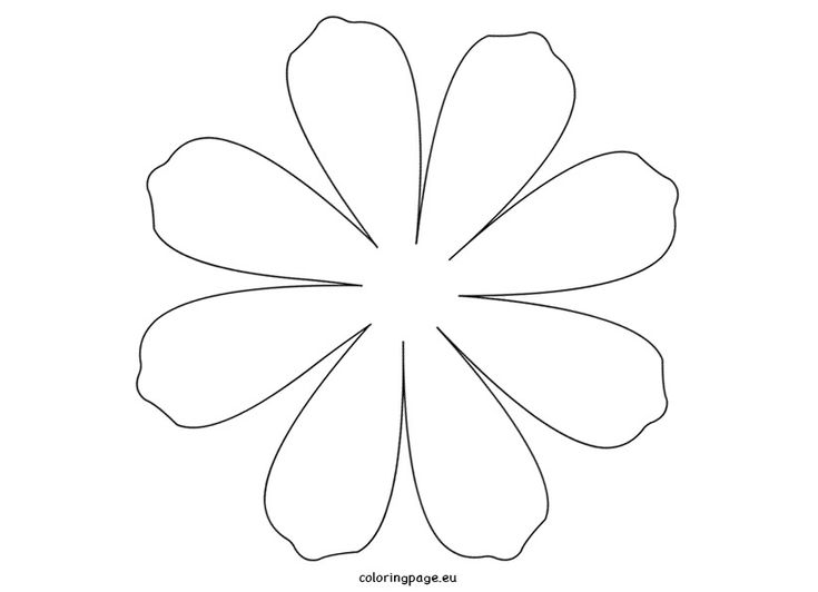 25+ best ideas about Flower Petal Template on Pinterest