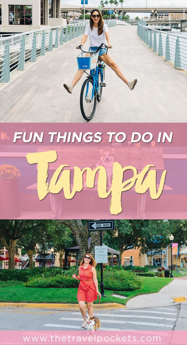 25 best ideas about Tampa florida on Pinterest  Tampa bay florida Tampa bay fl and Tampa bay area