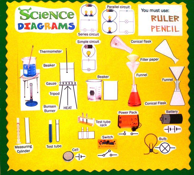 s copestakeje science classroom displays