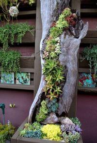 25+ best ideas about Tree stumps on Pinterest | Tree stump ...
