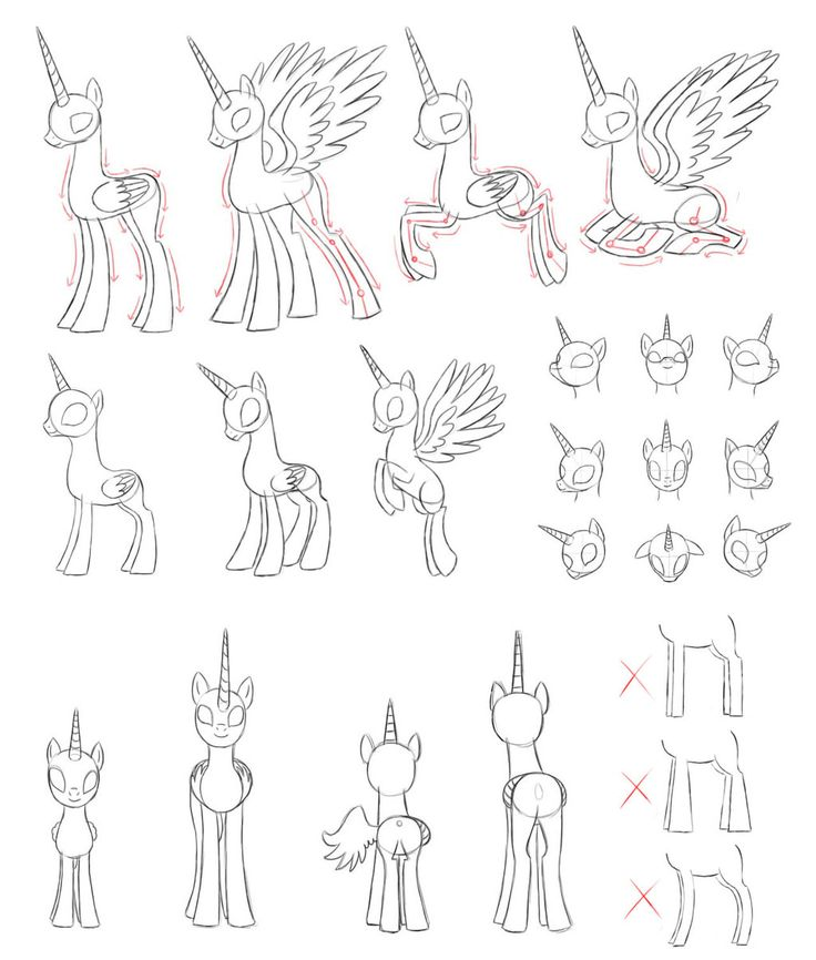 [MLP]draw alicorn by Pennygu.deviantart.com on @DeviantArt