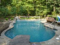 17 Best images about Freeform Pool Designs on Pinterest ...