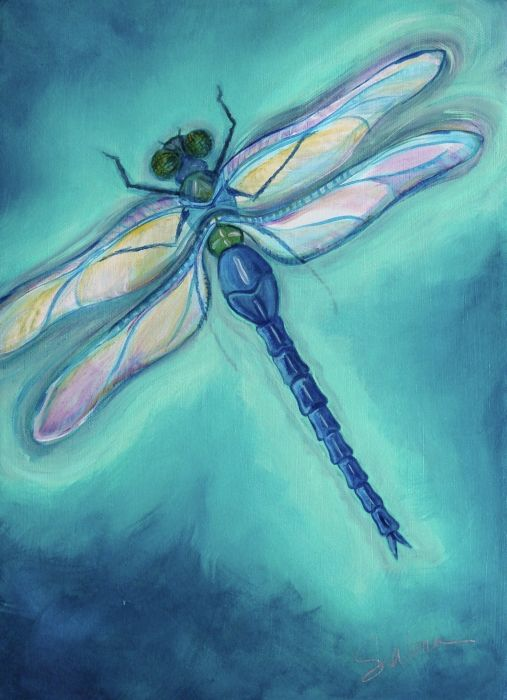 lovely dragonfly art dragonflies