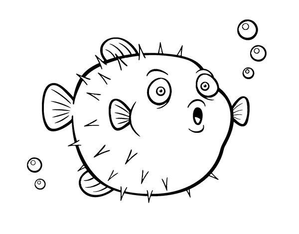 137 best Dibujos de Animales images on Pinterest