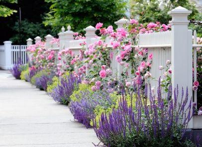 1781 Best Images About Great Garden Ideas On Pinterest Gardening