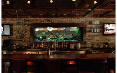 Fish tank bar man cave  Man Cave Ideas  Pinterest