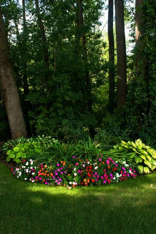 25 Best Ideas About Shade Garden On Pinterest Shade Landscaping