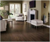 20+ best ideas about Dark Laminate Floors on Pinterest