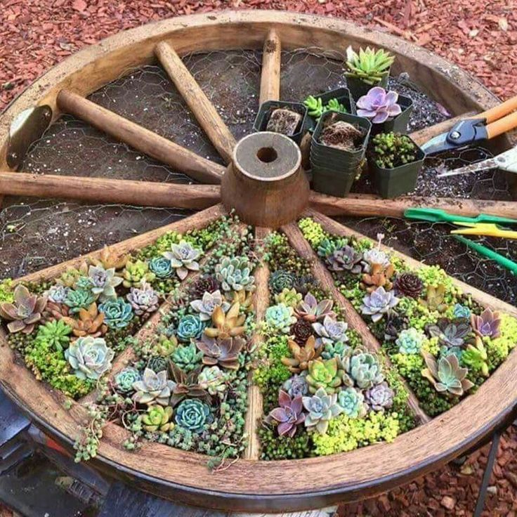 25 Best Ideas About Outdoor Flowers On Pinterest Diy Yard Decor